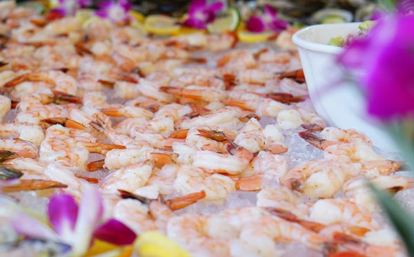 Catered Shrimps